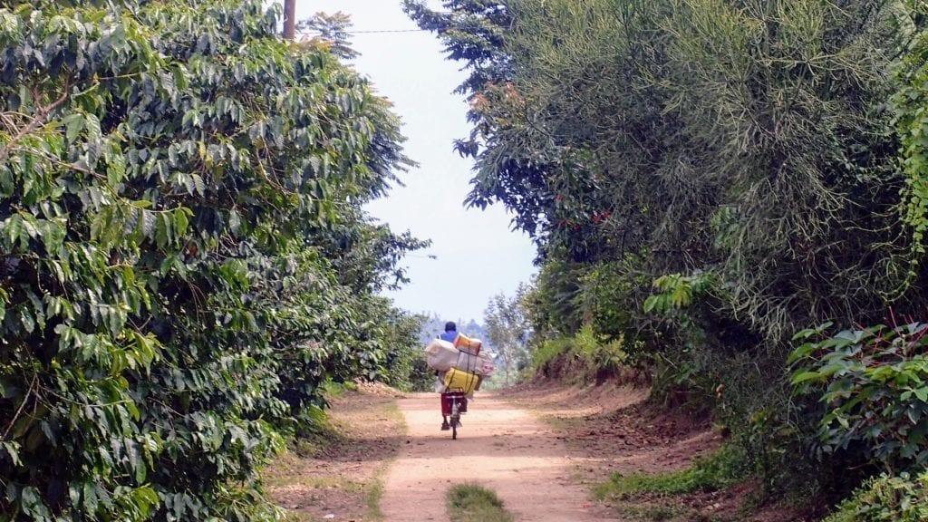 Congo Nile Trail transport