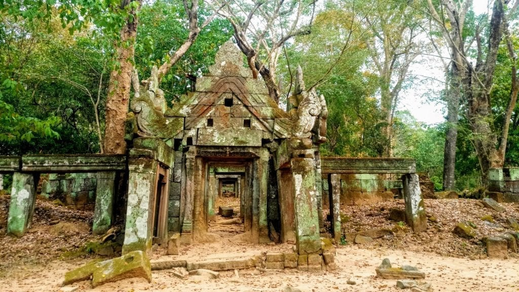 Forest temple ruins at Koh Ker, Cambodia