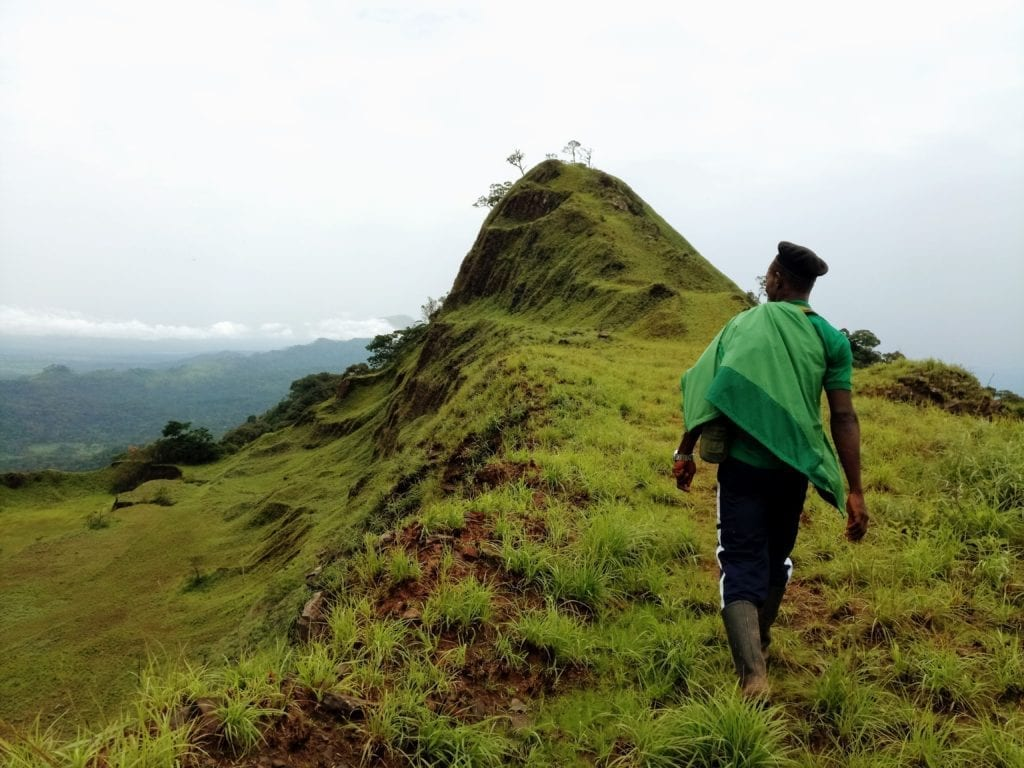 Hiking guide walks along ridge of Mount Nimba in West Africa