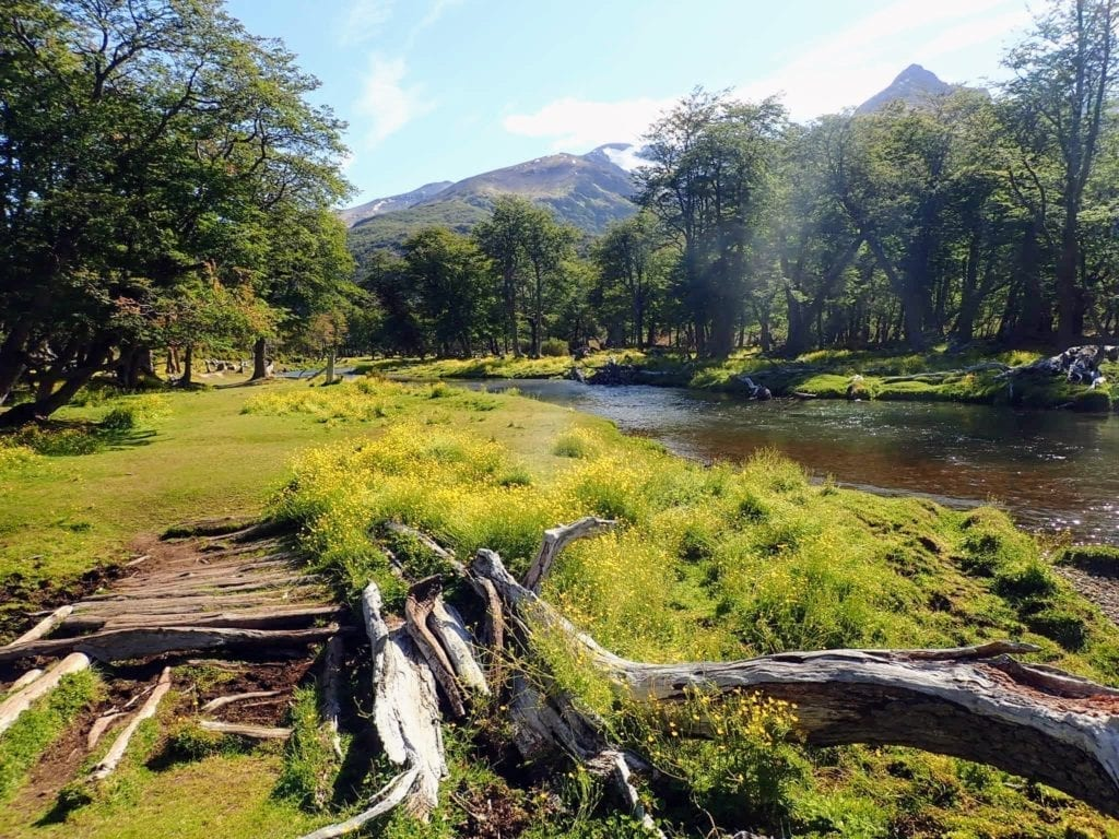 Log walkway through beautiful green river valley on Vinciguerra Glacier trail