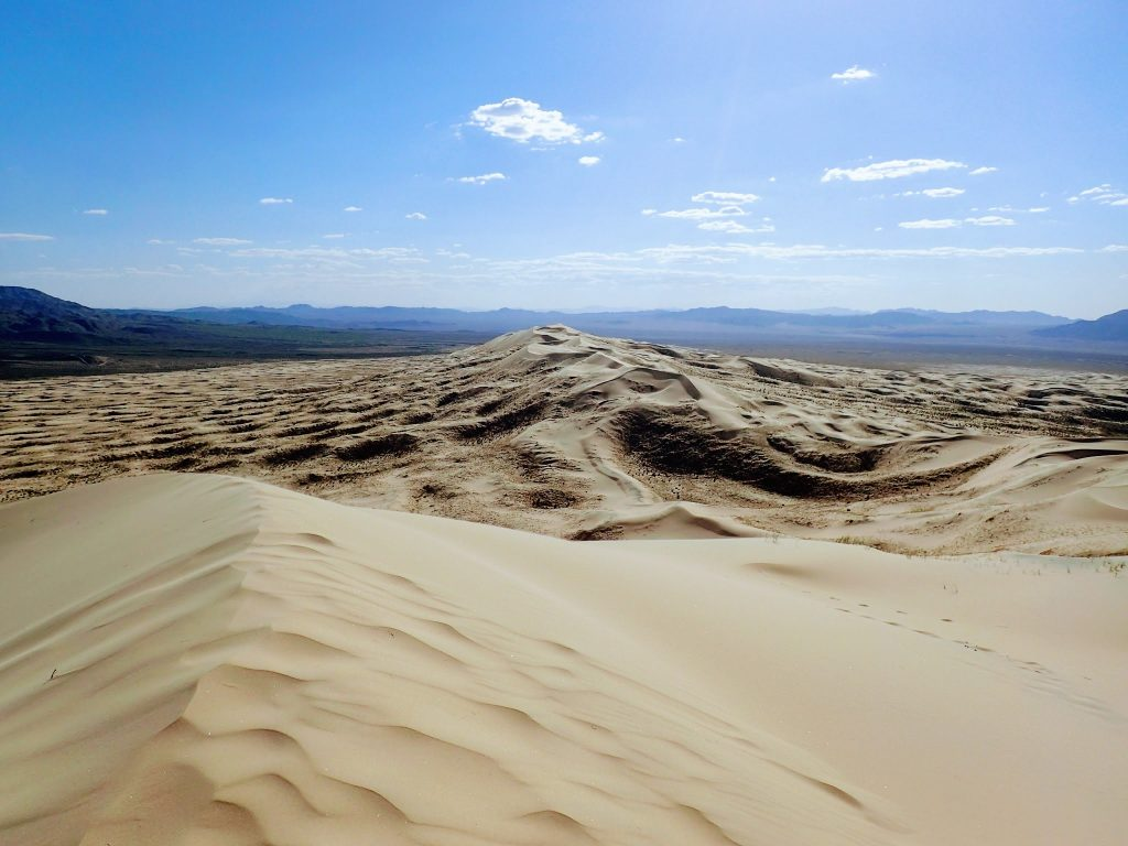Sand dunes at Devil's Playground in the Mojave Desert