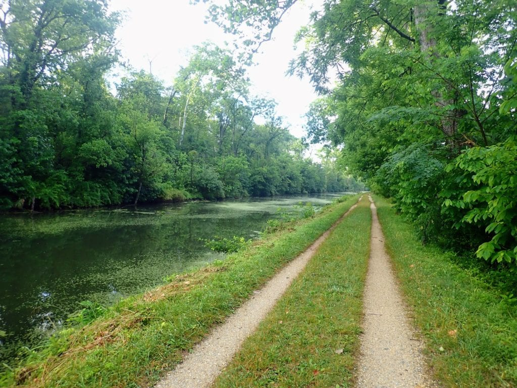 Grassy doubletrack bike trail beside canal on the C&O Towpath Trail