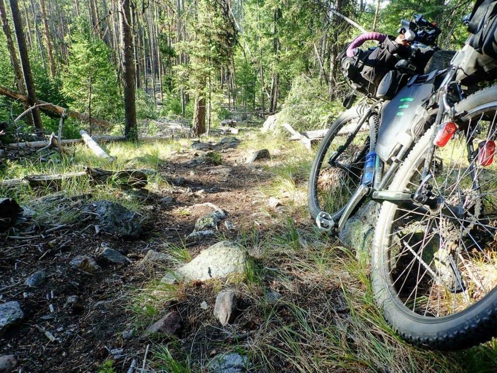 Biking rocky singletrack in Idaho forest