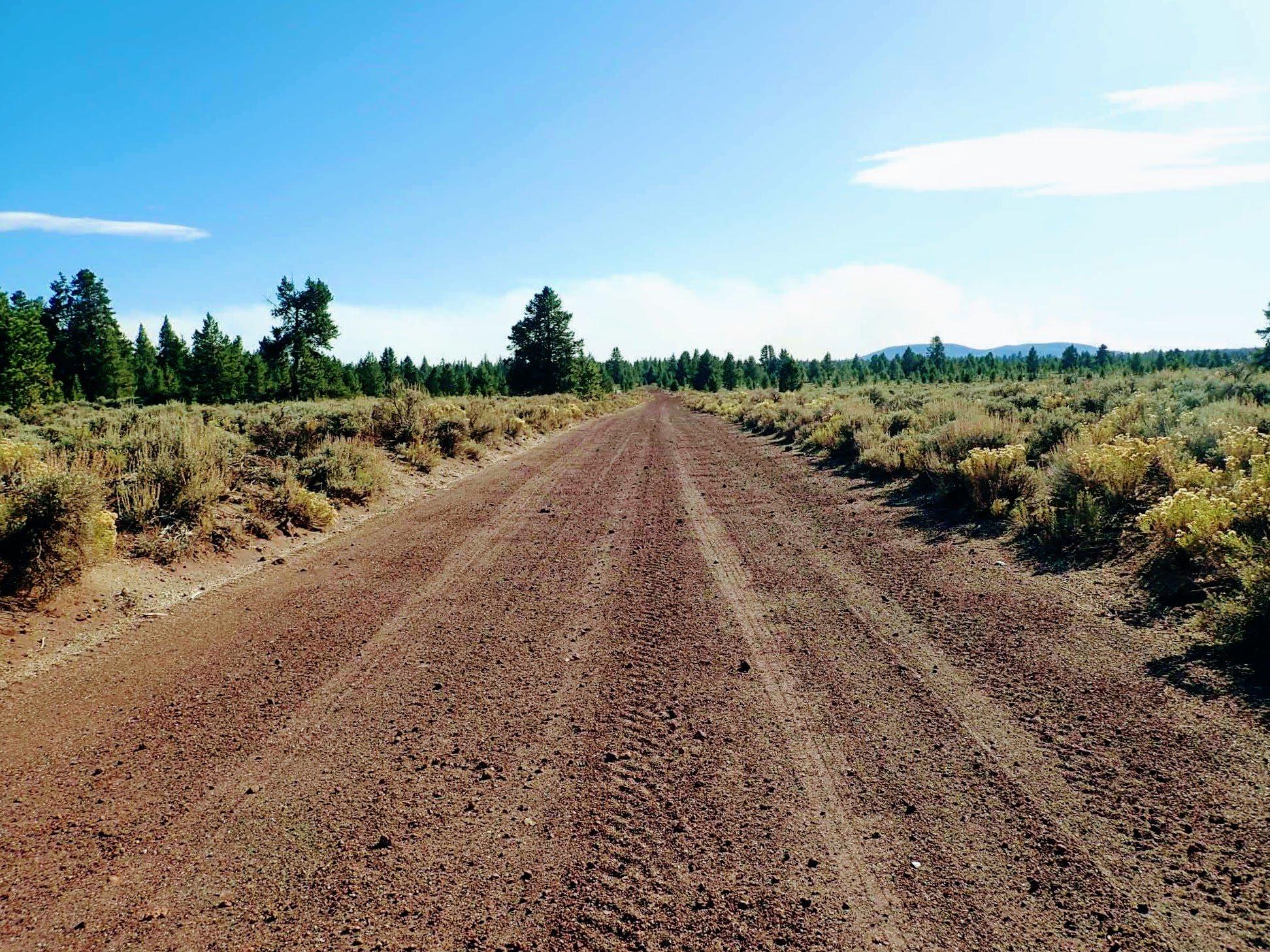 Oregon dirt road