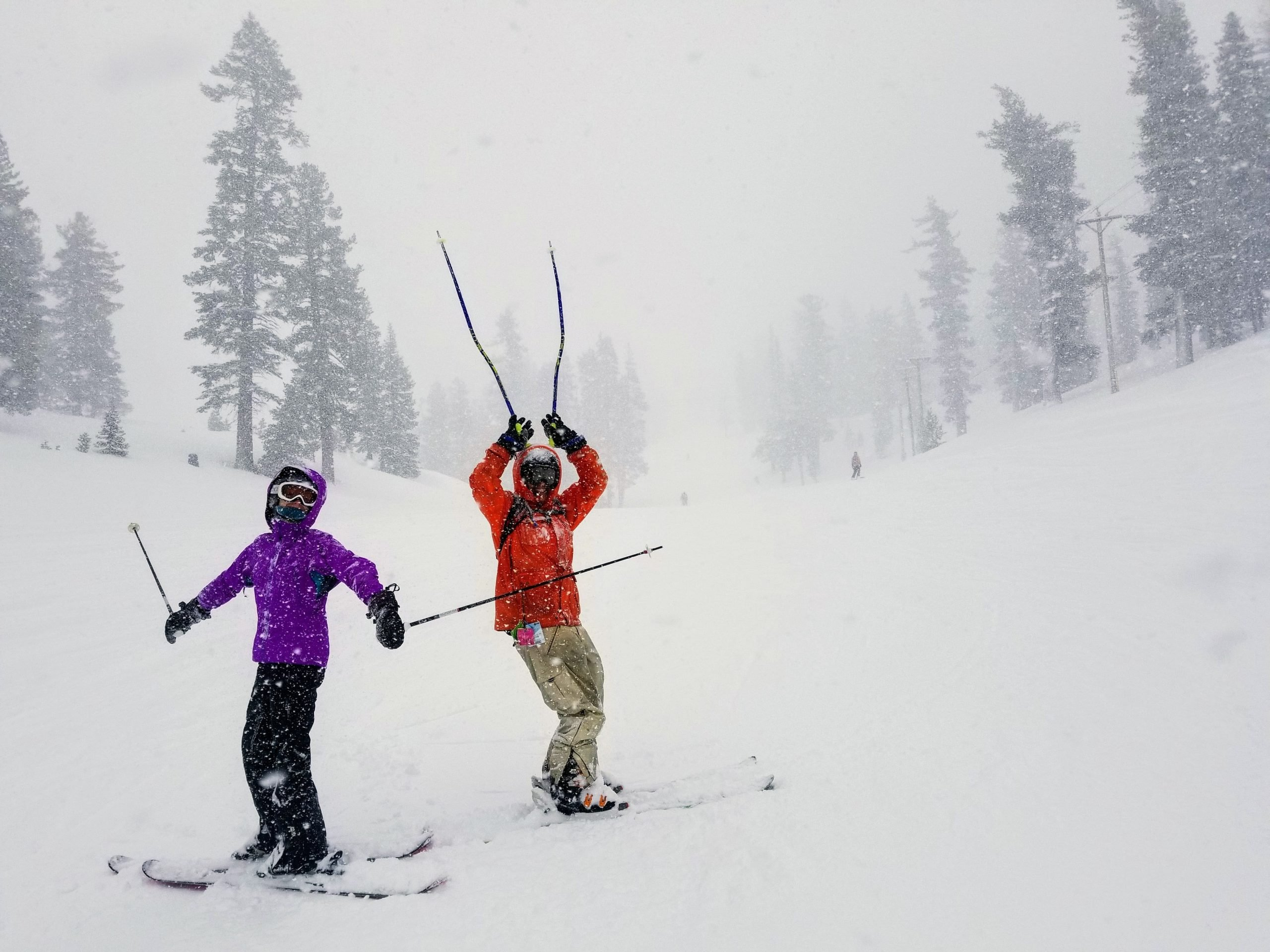 Two skiers in snowy weather