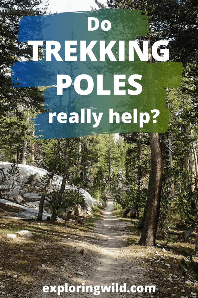 Picture of trail with text: do trekking poles really help?