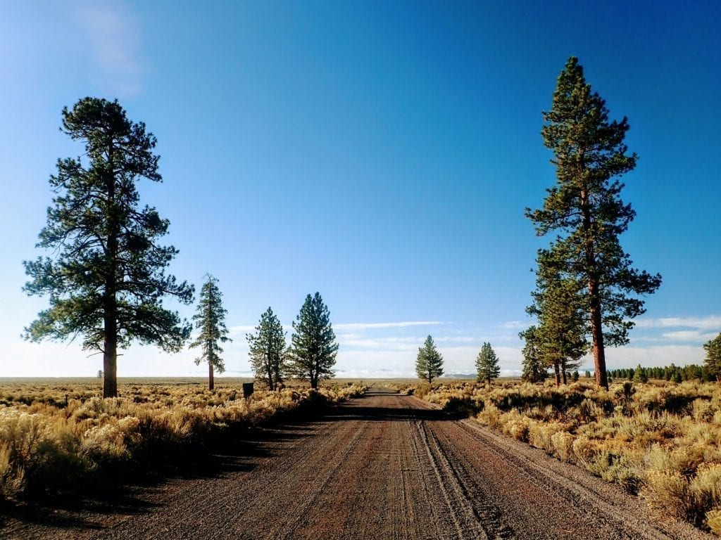 Dirt forest service road in central Oregon