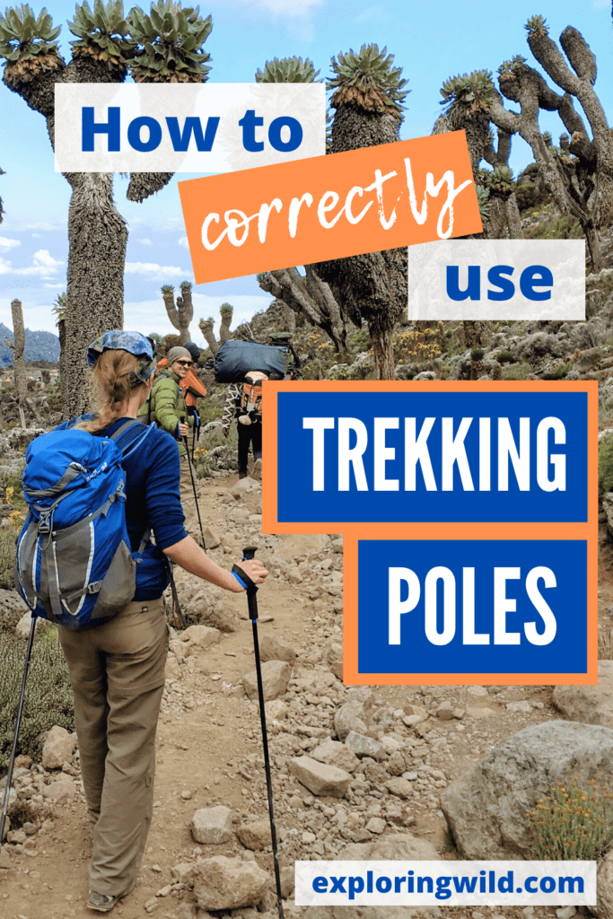 Picture of hiker with text: how to correctly use trekking poles