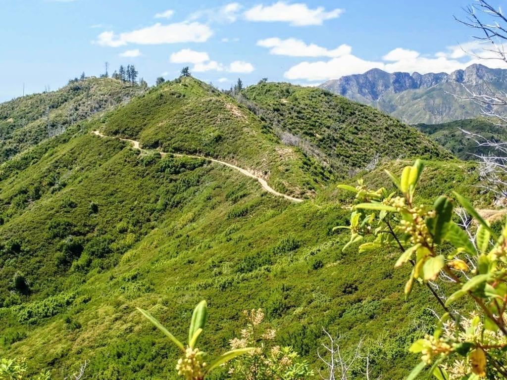 North Coast Ridge Road cuts through green hills