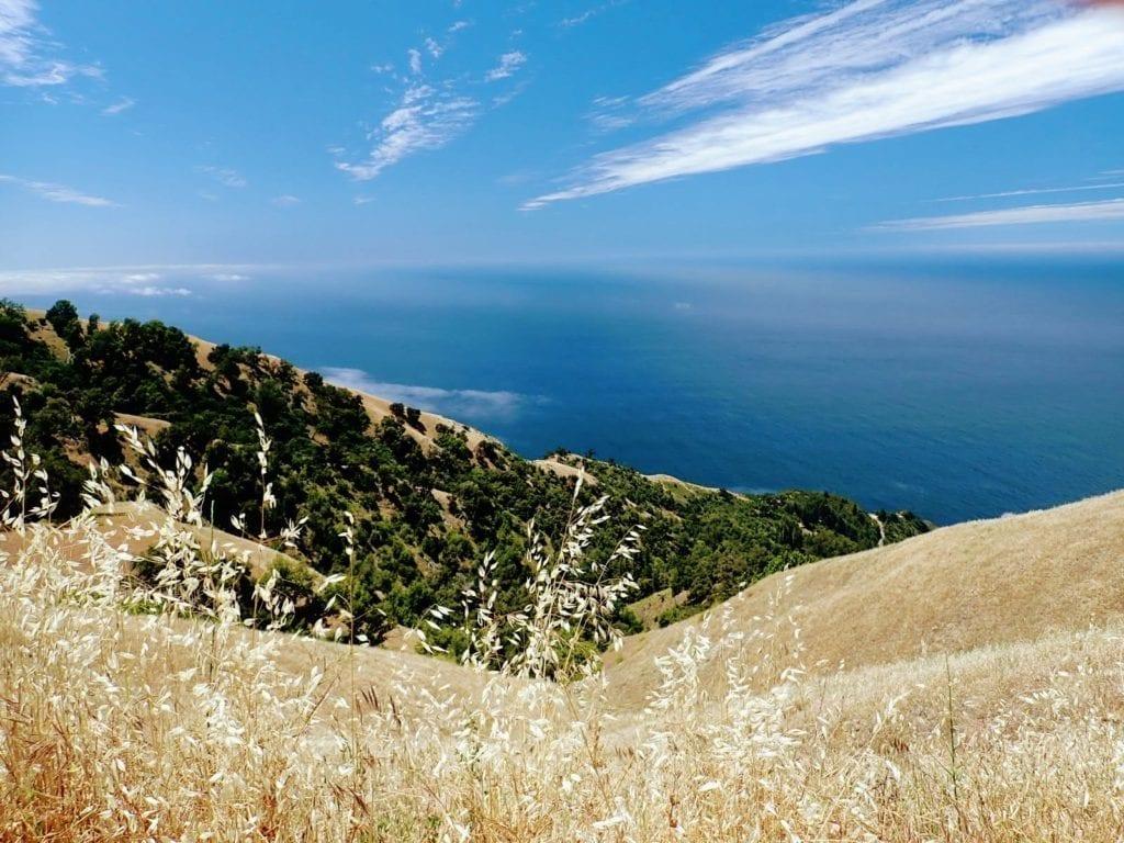 View of Pacific Ocean past golden hills