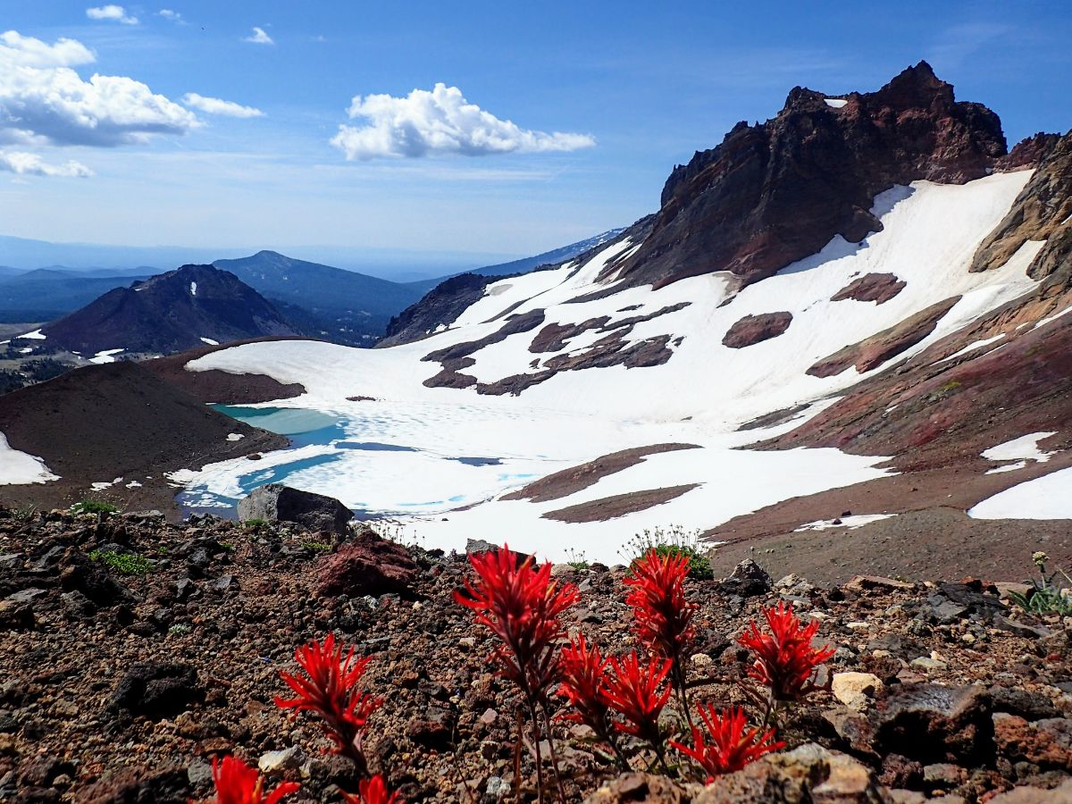Red flowers with icy alpine lake in background