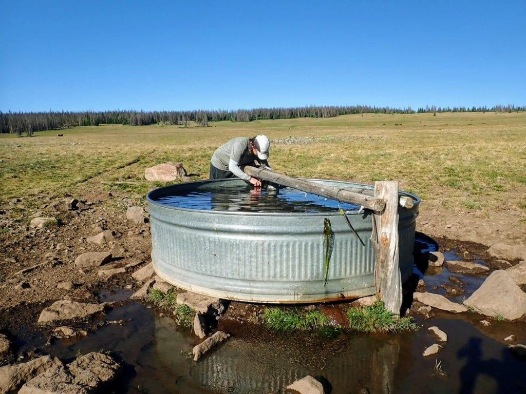 Collecting water from a cattle tank on the Colorado Trail