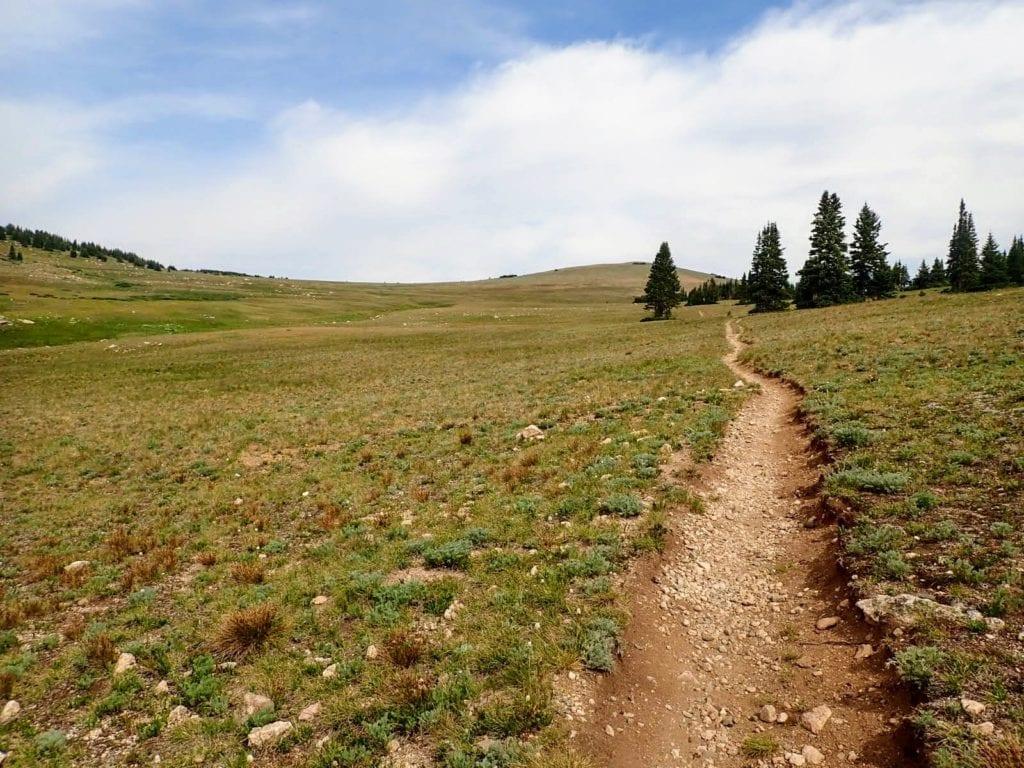 Trail through alpine tundra in Colorado