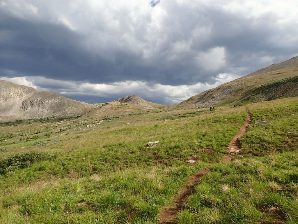 Hiking trail through green alpine meadow with clouds in the distance