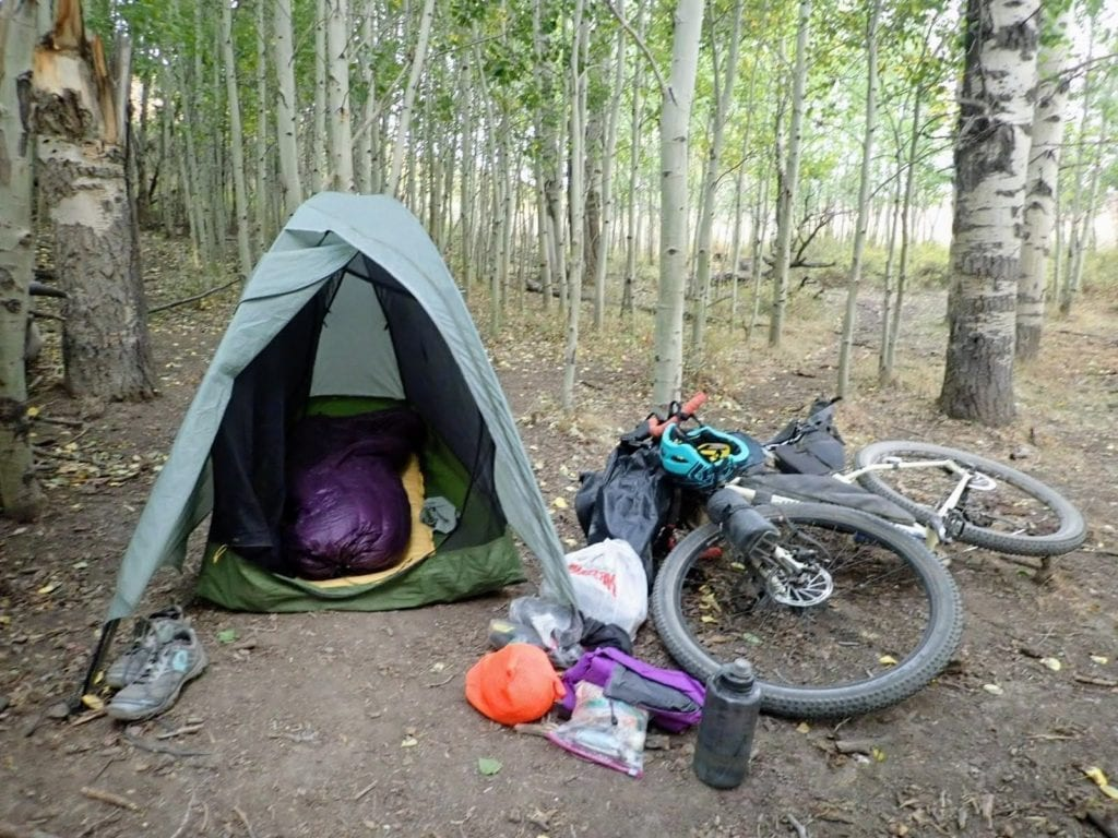 Bicycle and tent in aspen trees