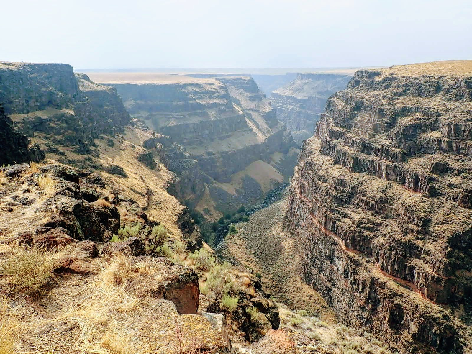 View into steep Bruneau River Canyon