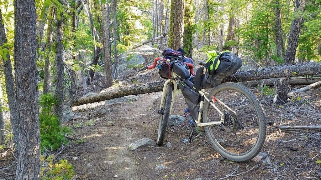 bikepacking bike leans against fallen tree across trail