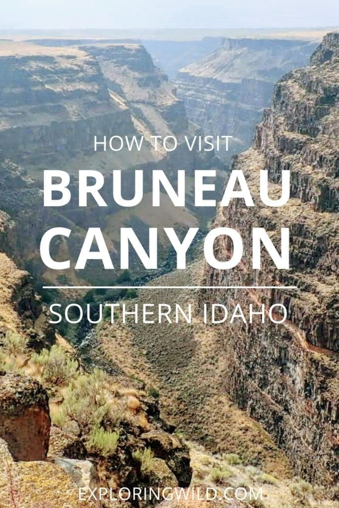 Picture of canyon with text: How to Visit Bruneau Canyon, southern Idaho