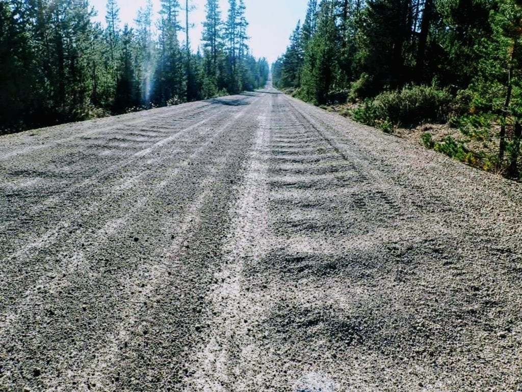 Closeup of corrugations in gravel forest road