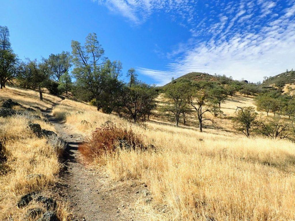 Trail leads across sunny hillside of golden grass