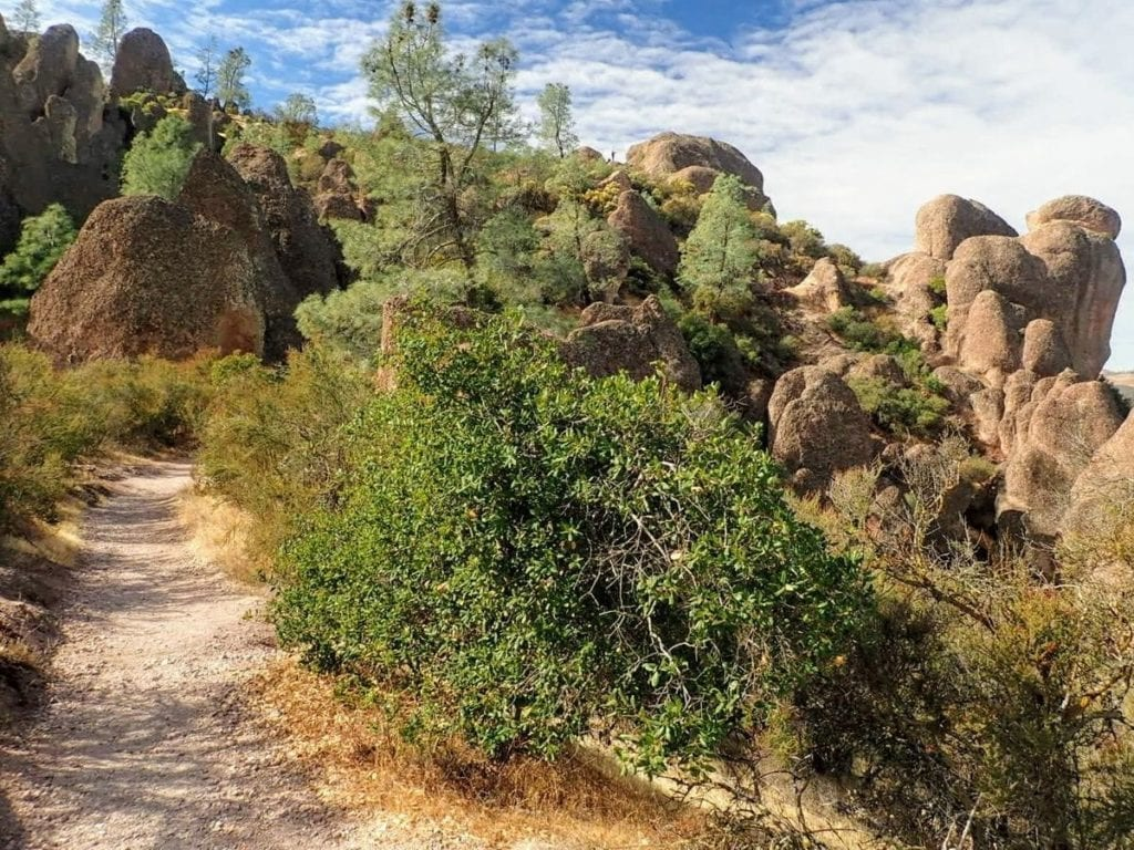Trail leads toward bulbous rock formations