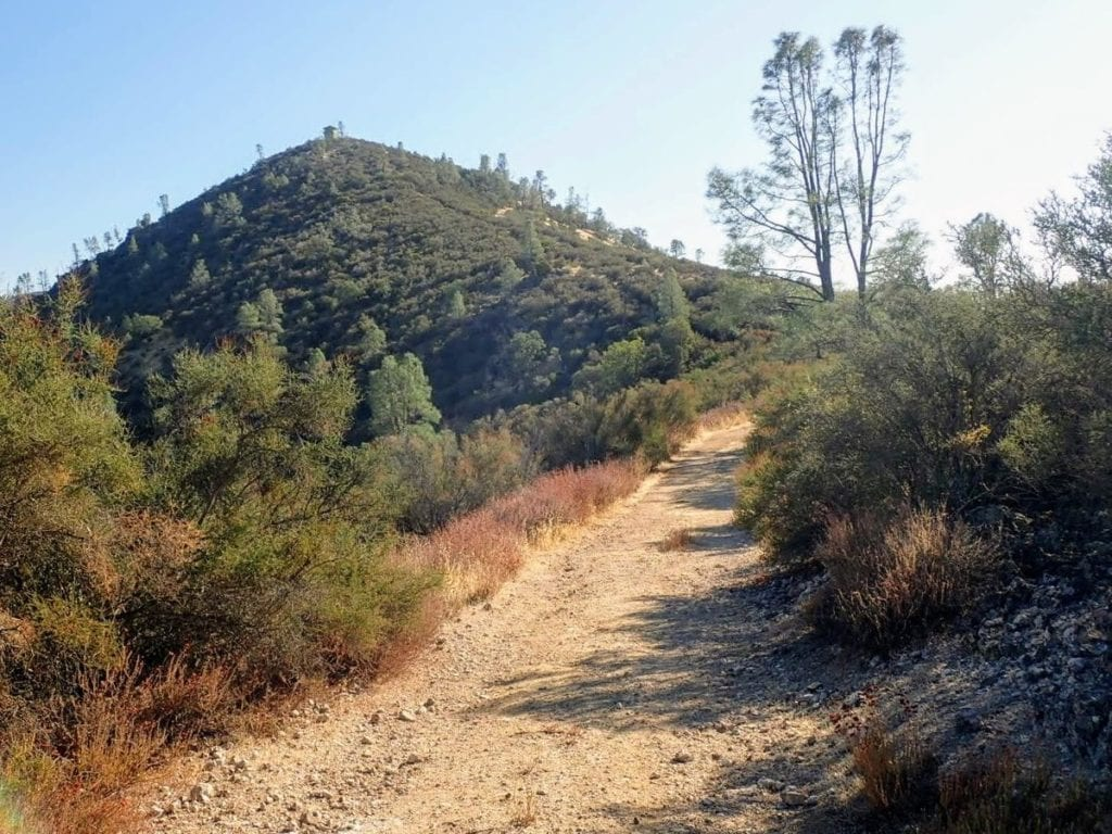 Rough dirt road leads to lookout tower on distant hill