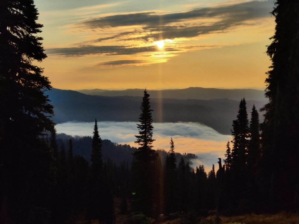 Clouds hover in forested valley as sun rises